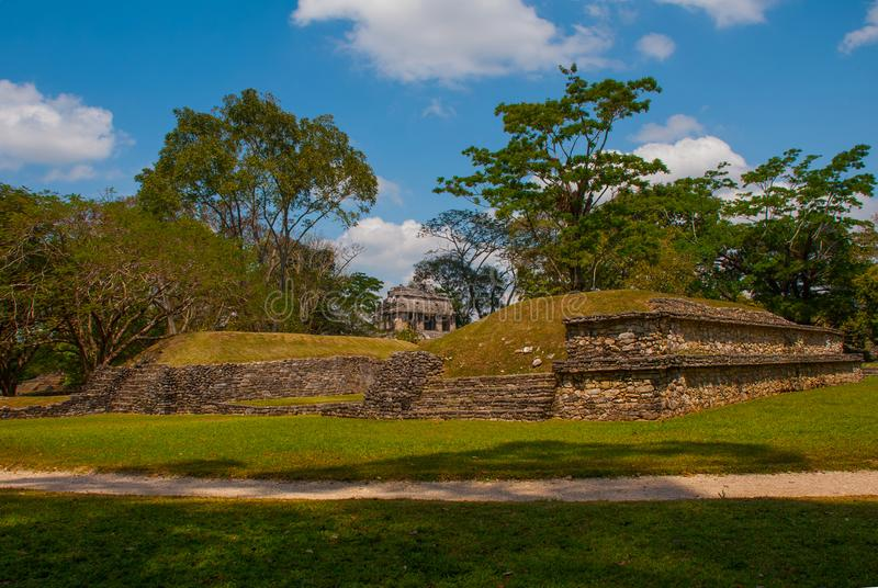Palenque, Chiapas, Mexico: Mayan ruins taken over by lush jungle. Ancient Mayan city stock images