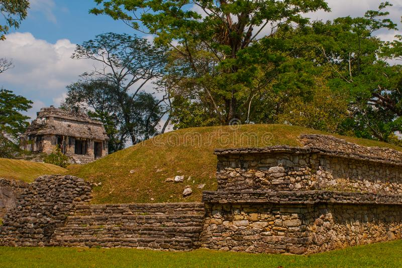 Palenque, Chiapas, Mexico: Mayan ruins taken over by lush jungle. Ancient Mayan city stock image