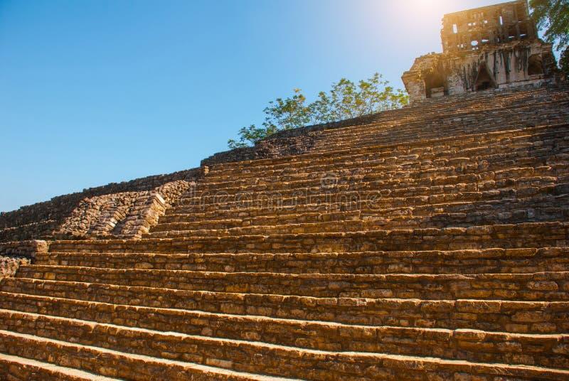 Palenque, Chiapas, Mexiko: Archäologischer Bereich mit Ruinen, Tempeln und Pyramiden in der alten Stadt des Mayas lizenzfreies stockfoto