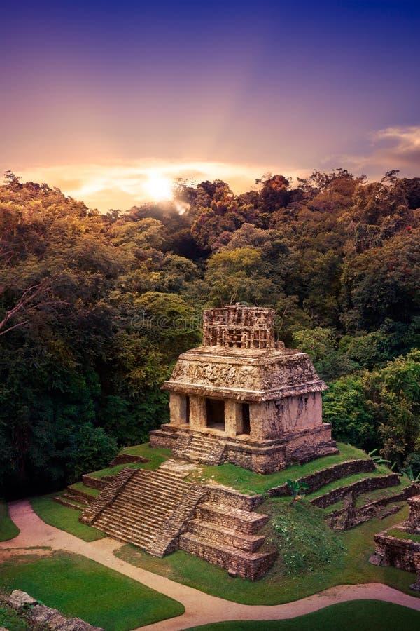 Palenque, Maya stad in Chiapas, Mexico royalty-vrije stock afbeeldingen