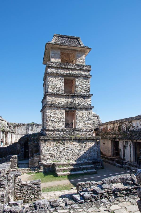 Palenque Mexico royaltyfri foto