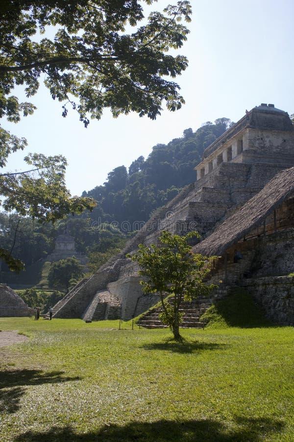 Palenque - Mexiko lizenzfreie stockfotos