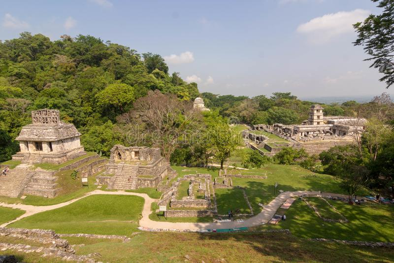 Palenque rujnuje majowie archiological Mexico zdjęcie royalty free