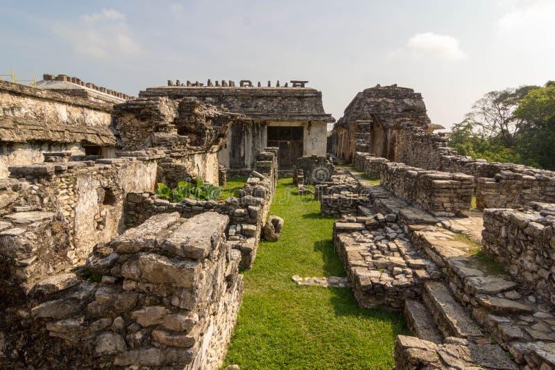 Palenque rujnuje majowie archiological Mexico zdjęcie stock