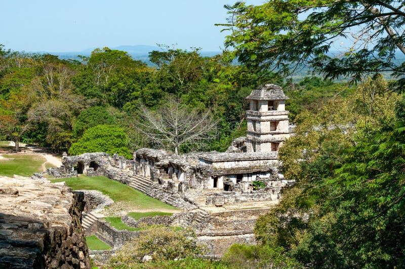 Palenqueruïnes, oude maya stad in wildernis van Mexico stock fotografie