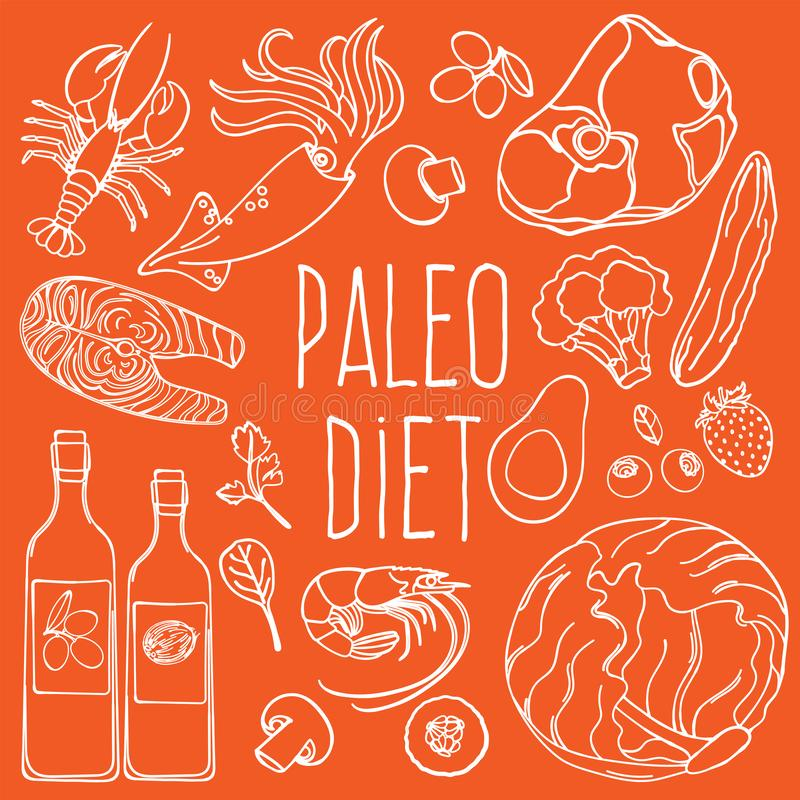 PALEO INGREDIENTS Healthy Food Diet Vector Illustration Set royalty free stock images