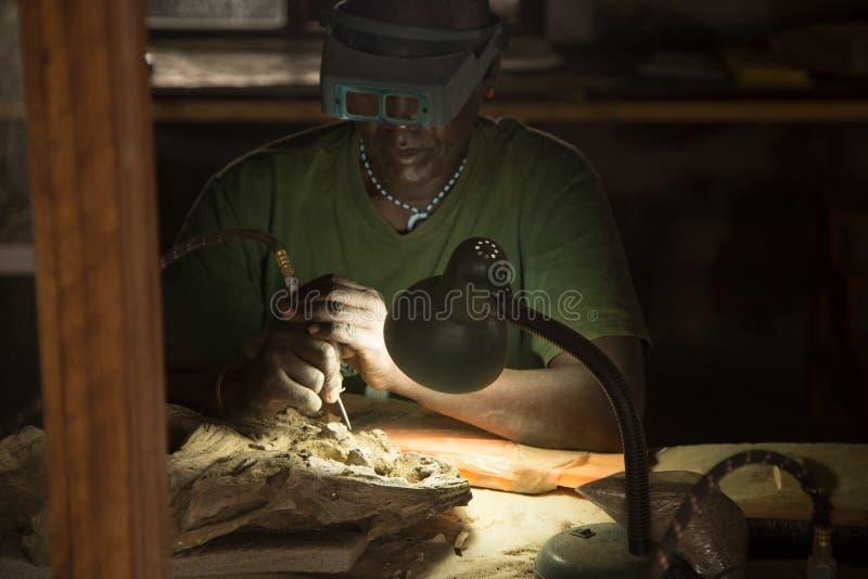 Paleontólogo africano en el trabajo imágenes de archivo libres de regalías