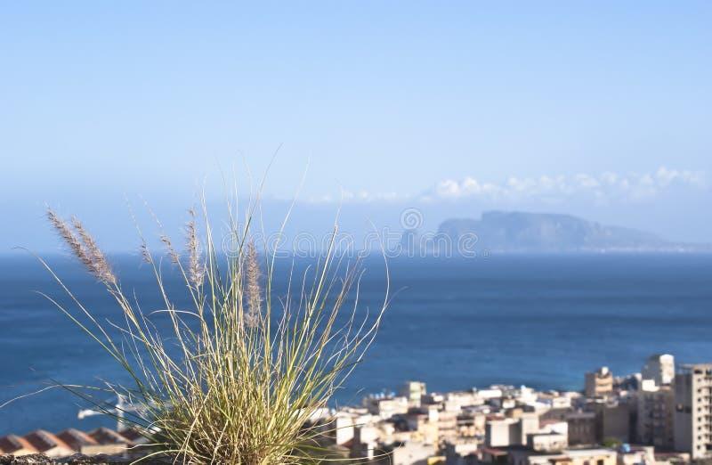 Palermo Town På Segla Utmed Kusten Arkivbilder