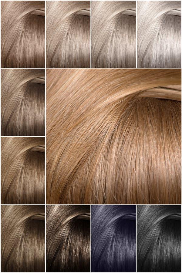 Paleta de colores del pelo con una amplia gama de muestras Textura del pelo en diferente fotos de archivo libres de regalías