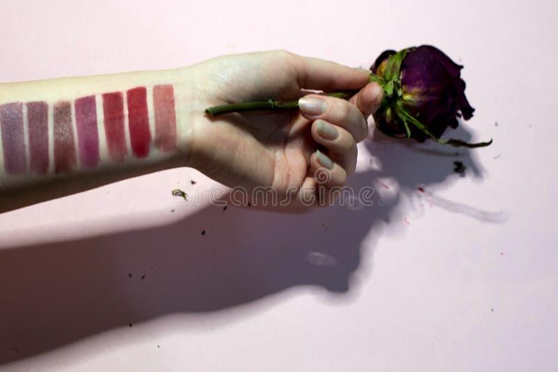 Paleta de colores de la barra de labios en su mano fotografía de archivo
