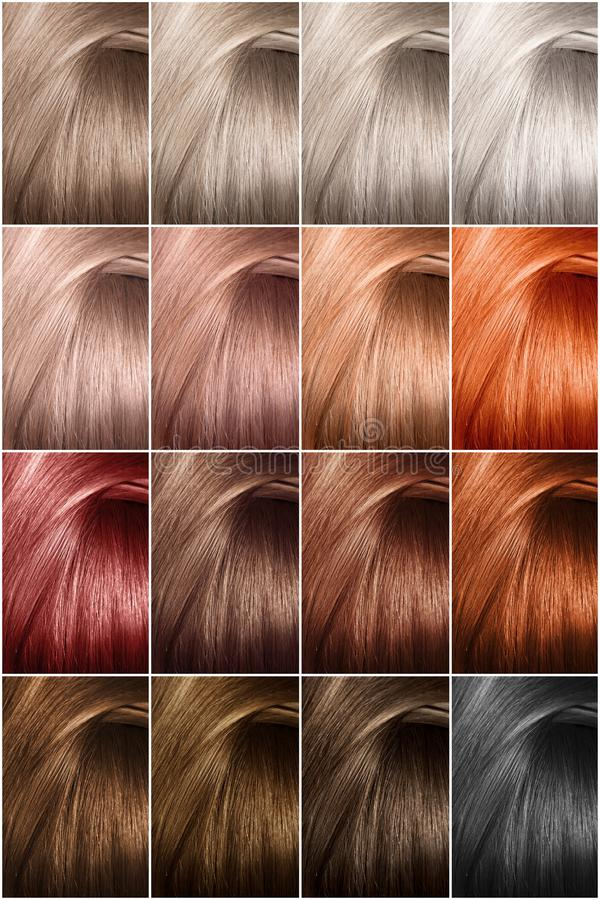 Paleta de cores do cabelo com uma vasta gama de amostras Amostras de tinturas de cabelo tingidas fotografia de stock royalty free