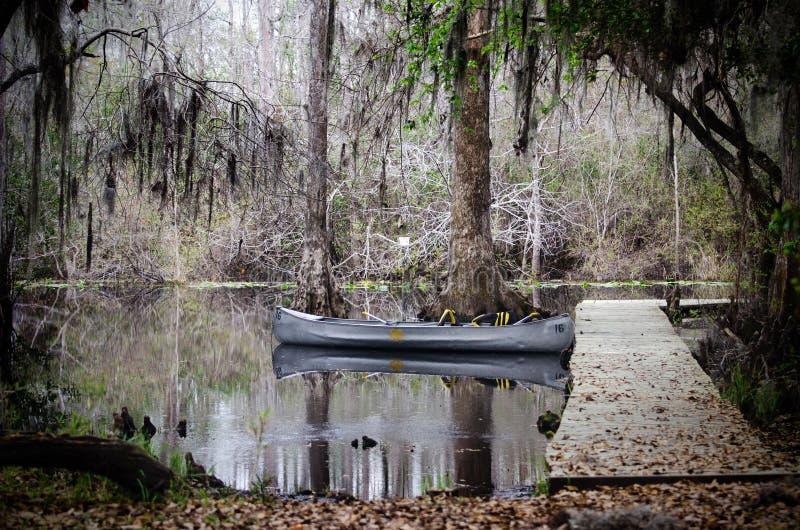 Paleta de la canoa de Okefenokee foto de archivo libre de regalías