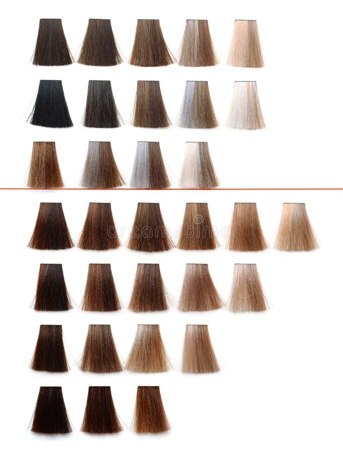 Paleta de la muestra del tinte de pelo fotografía de archivo libre de regalías