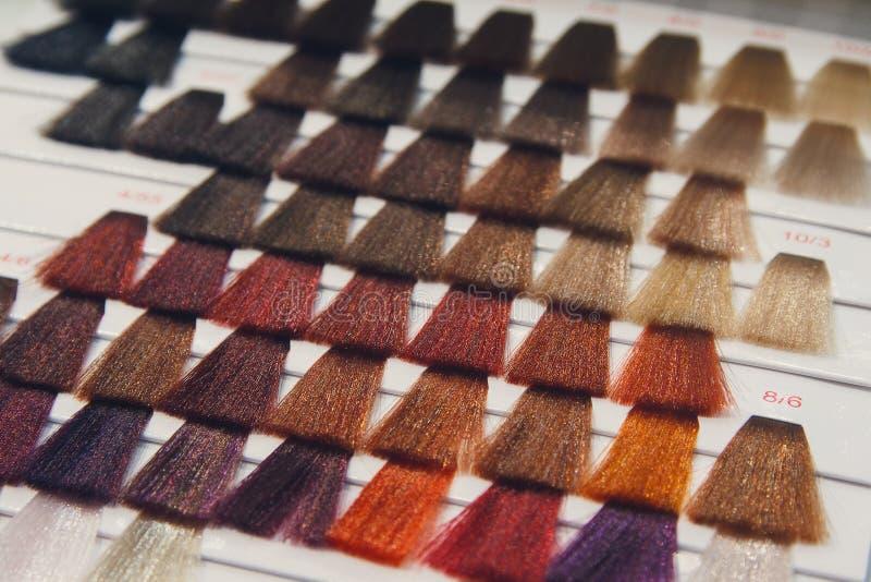 Paleta de modelos del pelo coloreado fotos de archivo
