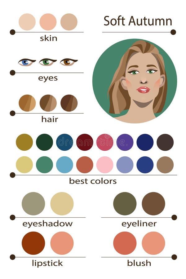 Paleta estacional del análisis de color del vector común para el otoño suave Los mejores colores del maquillaje para el tipo suav libre illustration