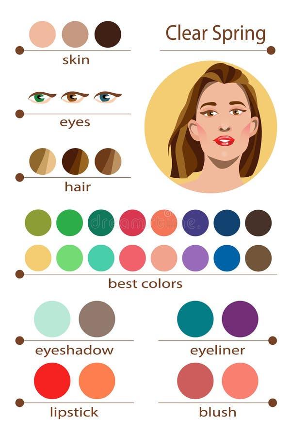 Paleta estacional del análisis de color del vector común para la primavera clara Los mejores colores del maquillaje para el tipo  libre illustration