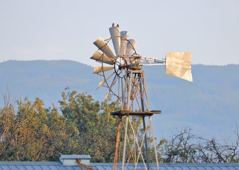 Paleta inmóvil del molino de viento o de tiempo fotografía de archivo