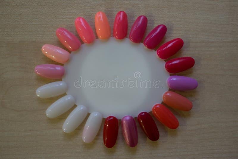 Paleta para las muestras de esmalte de uñas multicolor del gel imagenes de archivo