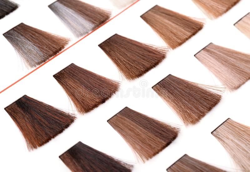 Paleta włosiane koloru barwidła próbki obrazy stock