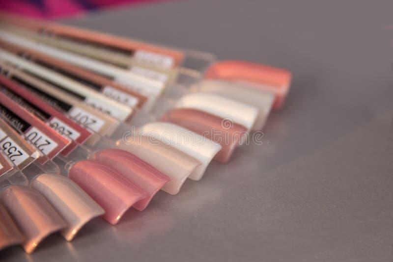 Paleta z swatches gwoździa połysk Kolekcja próbki lakier dla manicure Pastelowych kolorów Palcowa gwóźdź sztuki projekta próbka fotografia royalty free