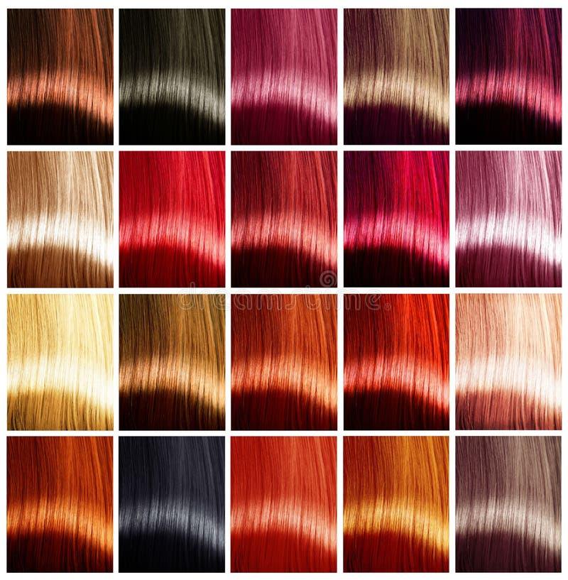 Palette de couleurs de cheveux teintes photo libre de droits