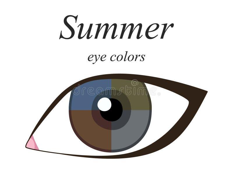 Palette saisonnière d'analyse de couleur pour le type d'été d'aspect femelle Couleurs d'oeil pour le type d'été illustration de vecteur