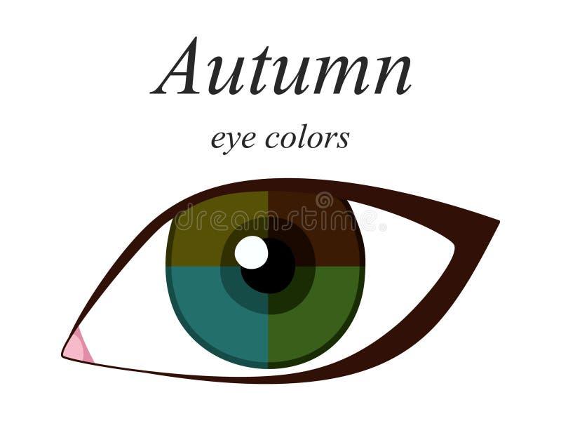 Palette saisonnière d'analyse de couleur pour le type d'automne d'aspect femelle Couleurs d'oeil pour le type d'automne illustration libre de droits