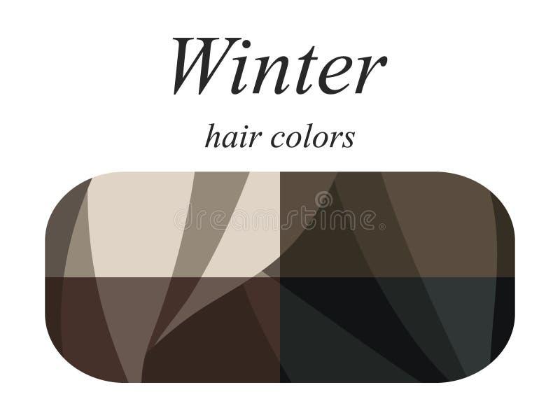 Palette saisonnière d'analyse de couleur pour le type d'hiver d'aspect femelle Couleurs de cheveux pour le type d'hiver illustration libre de droits