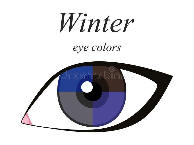 Palette saisonnière d'analyse de couleur pour le type d'hiver d'aspect femelle Couleurs d'oeil pour le type d'hiver illustration stock
