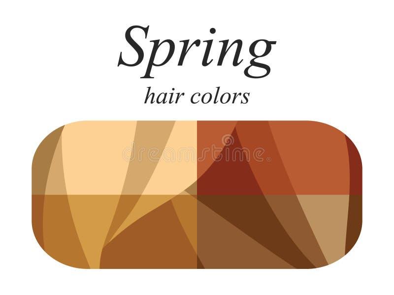 Palette saisonnière d'analyse de couleur pour le type de ressort d'aspect femelle Couleurs de cheveux pour le type de ressort illustration de vecteur