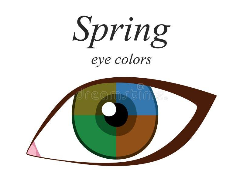 Palette saisonnière d'analyse de couleur pour le type de ressort d'aspect femelle Couleurs d'oeil pour le type de ressort illustration de vecteur