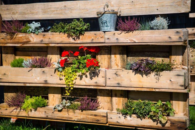 Palette umgebaut in Blumenkästen lizenzfreie stockbilder