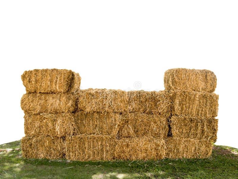 Palha seca na grama verde, isolada em um fundo branco imagem de stock royalty free