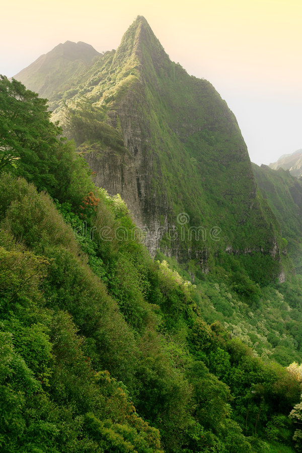 The Pali royalty free stock image