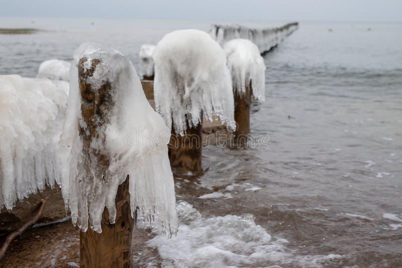 Pali congelati dei frangiflutti sui pali di legno ghiacciati della costa di mare fotografia stock