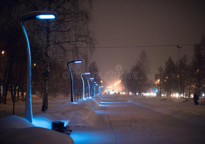 Pali di illuminazione nel parco su una notte di inverno immagine stock libera da diritti