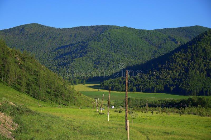 Pali di legno della linea elettrica che passa attraverso una valle fertile circondata dalle montagne Altai Siberia Russia paesagg immagini stock