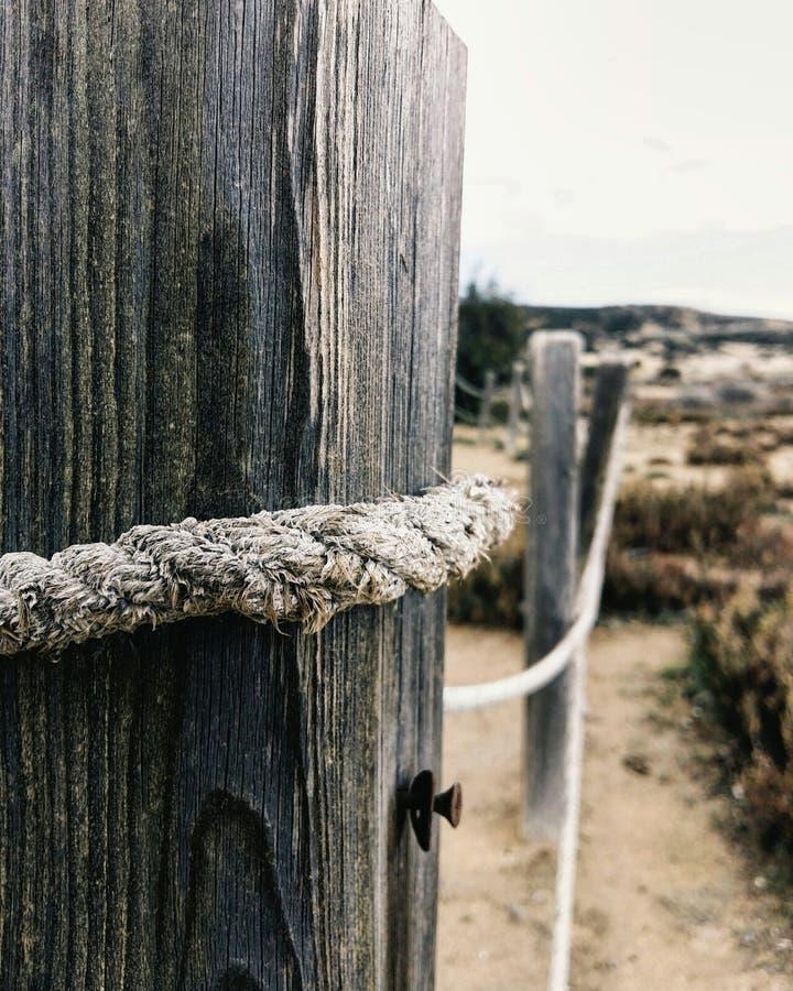 Pali di legno vicino al mare immagini stock libere da diritti