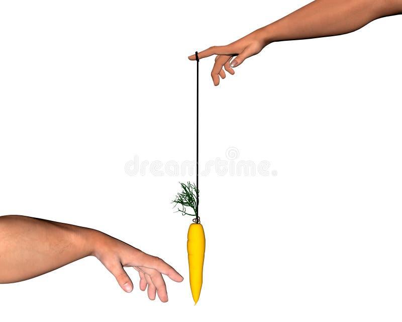 Palillo de zanahoria ilustración del vector