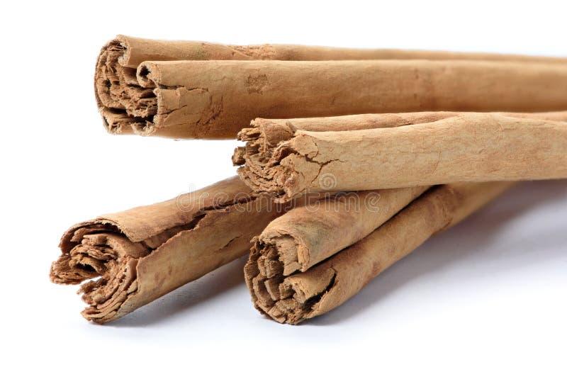Palillos de canela de Ceilán fotografía de archivo