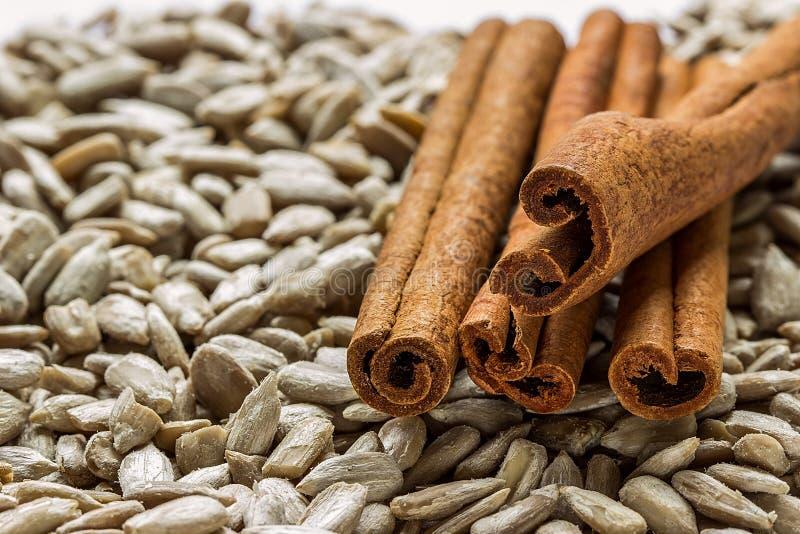 Palillos de canela en las semillas de girasol imagen de archivo