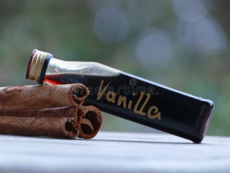 Palillos de canela y extracto de vainilla para la Navidad foto de archivo libre de regalías