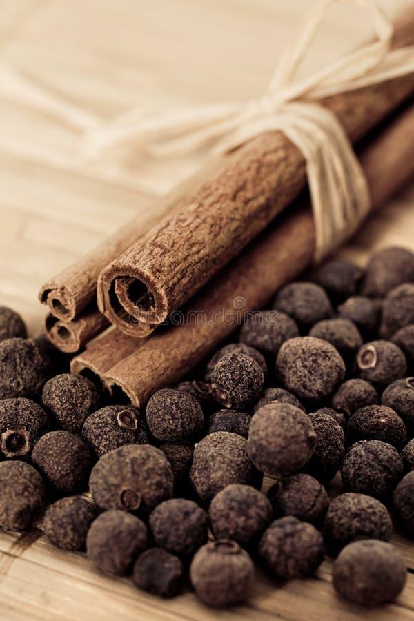 Palillos de cinamomo con la pimienta inglesa (pimienta de Jamaica) imagen de archivo