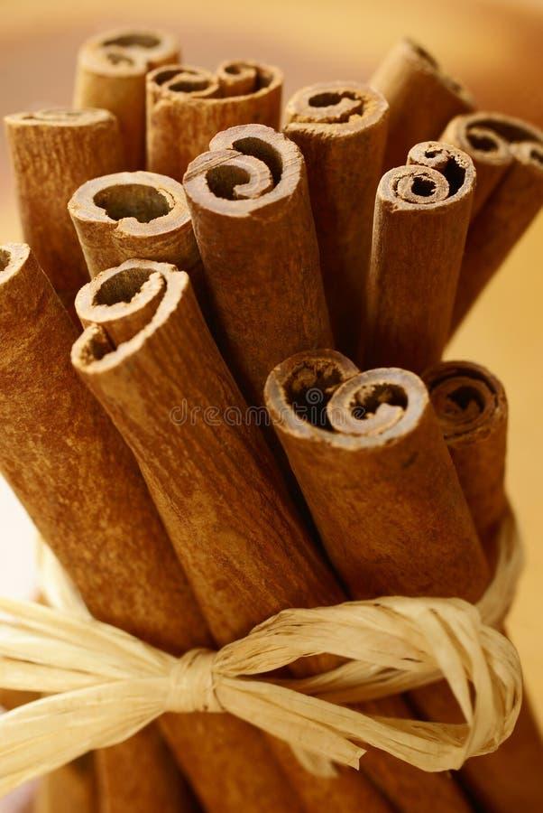Palillos de Cinnamone imagen de archivo
