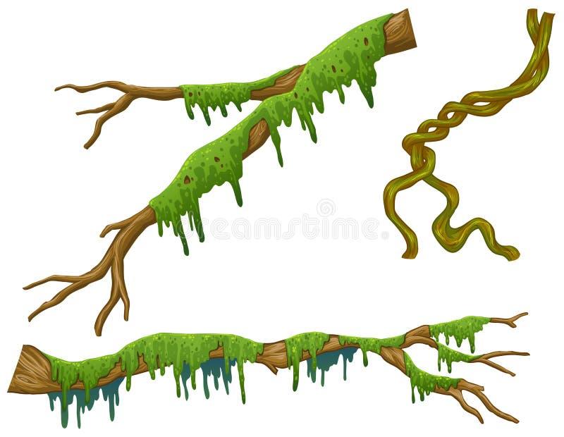 Palillos de madera con el musgo verde ilustración del vector