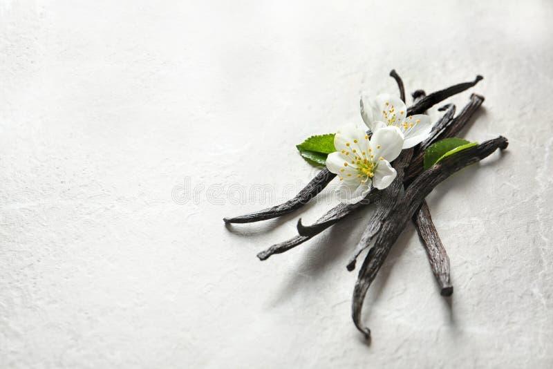 Palillos y flores de la vainilla imagen de archivo libre de regalías