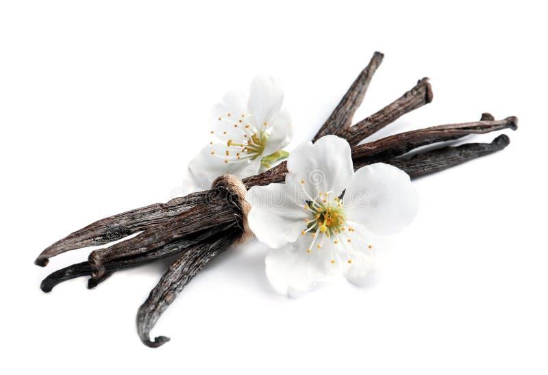 Palillos y flores de la vainilla foto de archivo libre de regalías
