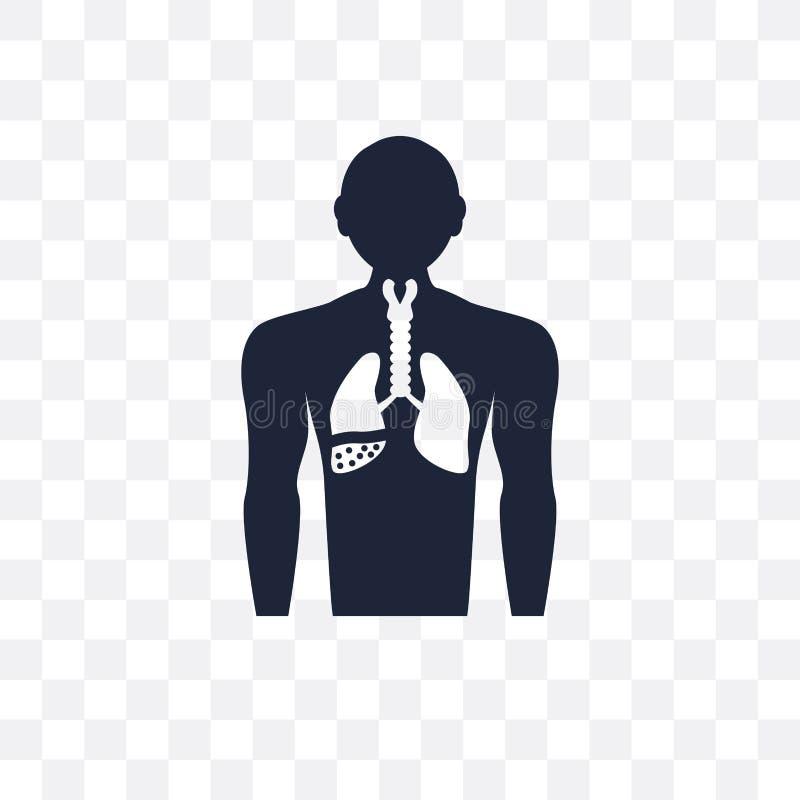 Palindromic reumatiek transparant pictogram Palindromic reumatiek stock illustratie