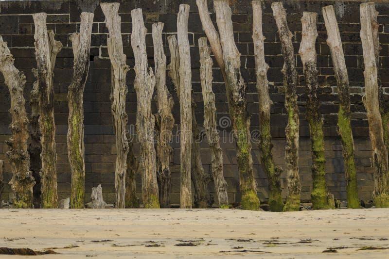 Palissade dans une plage française en La la Bretagne image libre de droits