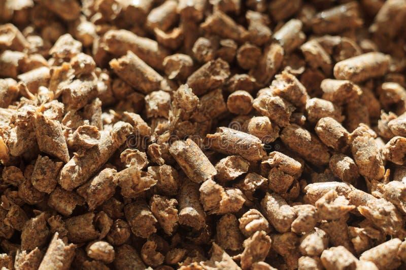 Paliwowego drewna wyrko w górę Źródło alternatywna czysta energia Mnóstwo wyrko Naturalny paliwo i energia przyszłość zdjęcie stock